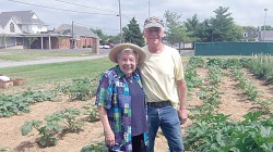 FOOD PANTRY GARDEN--Sr. Lucille Zerr, SSND, and Old St. Vincent Parishioner Robert Eck, are pictured tending the St. Mary Cathedral/Old St. Vincent Food Pantry garden. The Cape Girardeau food pantry serves over 459 families and 1,405 individuals each month thanks to a host of volunteers from the two parishes, Southeast Food Bank, and several local businesses such as Hinkebein Farms, which provides frozen sausage and brats. (Submitted photo)