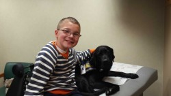 POOCH COMFORTS PATIENT—Labrador Retriever 'Niles' recently joined Parker Strobeck for a doctor's appointment at Mercy Kids in Springfield, MO. (Submitted photo)