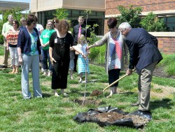 SURVIVOR SAPPLING—Whit Sanders, executive director of cancer services at Mercy Joplin, planted a sapling from the 9/11 Memorial Tree near the cancer center's healing garden at a ceremony Sun., May 22, during the fifth anniversary of the Joplin tornado. (Submitted photo)